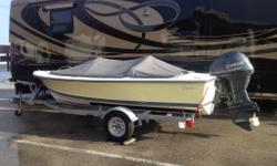 Color depth,swim ladder,Fusion radio system Custom 2015 Aluminum trailer,sumbrella cover Absolutely mint