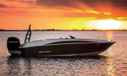 Let the revolutionary Bayliner Element be the start of something new for your family. It puts boating within easy reach with a stunningly affordable price, familiar automotive-style handling, and class-leading stability and safety features. Plus it has